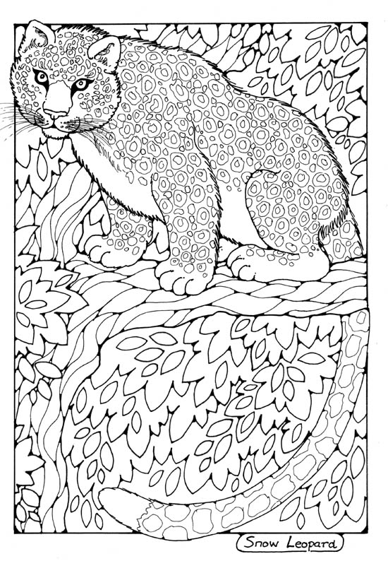 wild animal coloring pages for adults - animals to colour in