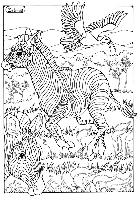 Animals to Colour In